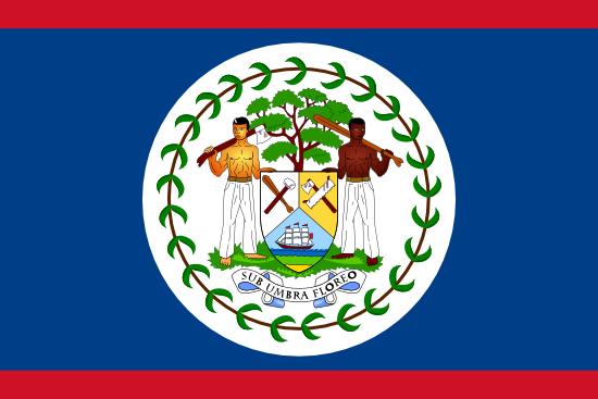 Education Verification, Belize