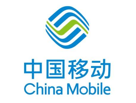 Employment Rating, China
