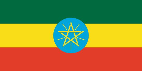 Employee Audits & Monitoring, Ethiopia