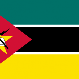 Media intelligence search, Mozambique