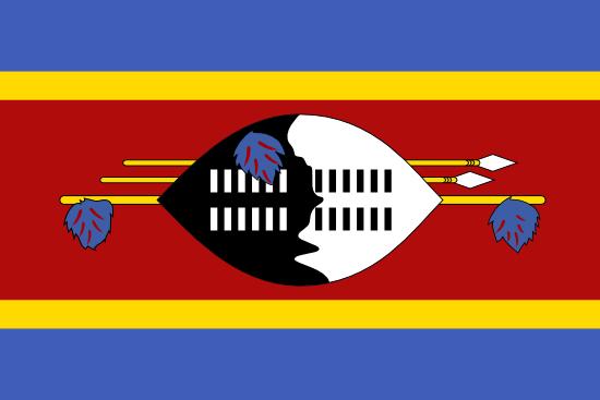 Social Media Profiling, Swaziland