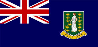 Internal Only Monitoring Alert Adjudication Event, Virgin Islands (British)