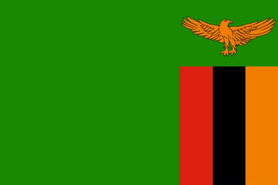 Internal Only Monitoring Alert Adjudication Event, Zambia
